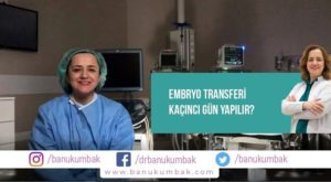 Embryo Transferi Kaçıncı Gün Yapılır? 1
