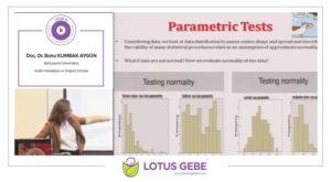 Parametric Tests, Bahçeşehir Üniversitesi, Şubat 2017, İstanbul 1