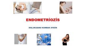 Endometriozis, İBB Eğiticilerin Eğitimi Toplantısı, 2015 2