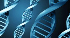 Tüp Bebek Tedavisinde Embryolarda Genetik Ayıklama Ne Zaman Yapılır? 1