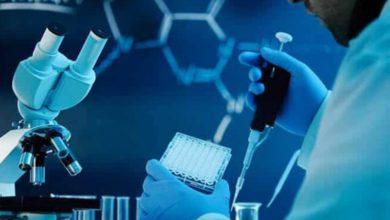 Tüp Bebek Tedavilerinde Genetik İnceleme Ne Zaman Yapılmalıdır?