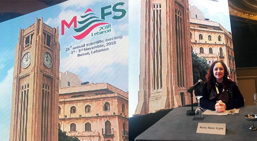 MEFS' 2018, Kasım 2018, Beyrut, Lübnan 3
