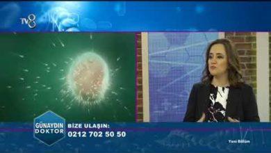TV8 - 2018 Tüp Bebek Tedavisinde Güncel Durum